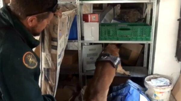 La Guardia Civil en el operativo de búsqueda de los niños de Godella